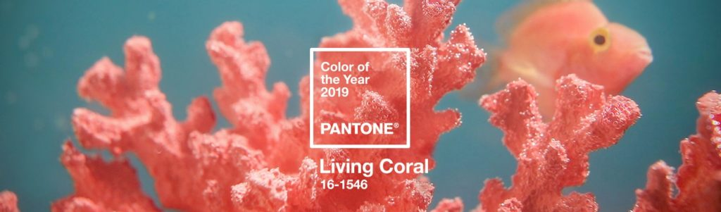 Pantone Colour of the Year 2019 - Living Coral. Image of Coral with fish.